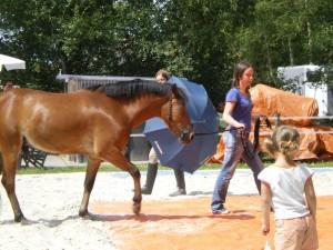 afsluitdag paardrijden 2009 115